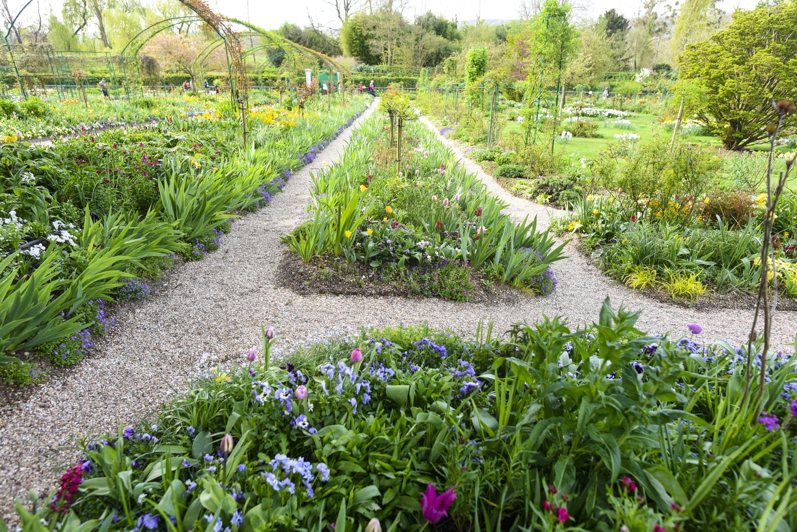 Monet's garden excursion