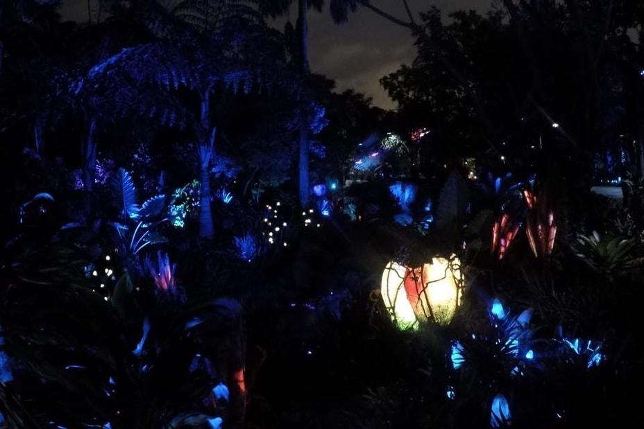 Pandora - The World of Avatar at night