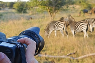Day5: Kruger National Park