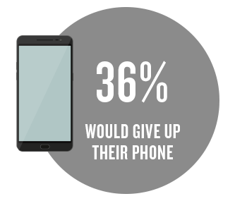 36% would give up their phone