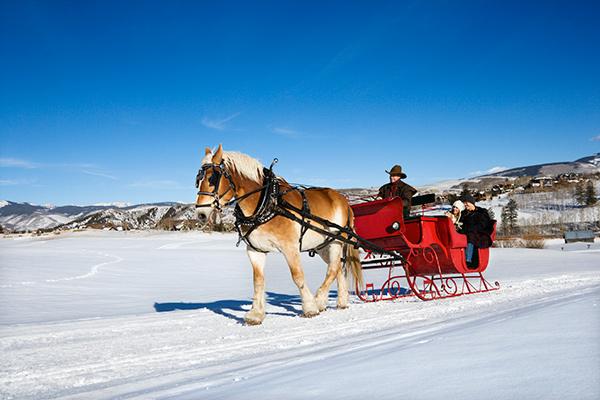 Banff Horsesleigh