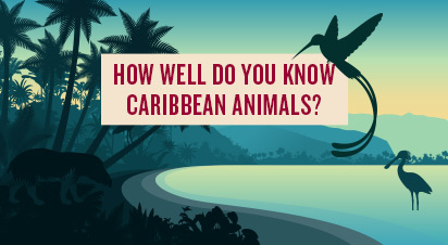 How Well Do You Know Caribbean Animals?