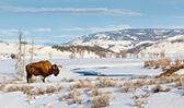 Disney Adventures Destinations - Wyoming