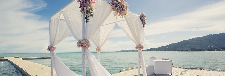 WestJet Groups - Divider Wedding Image